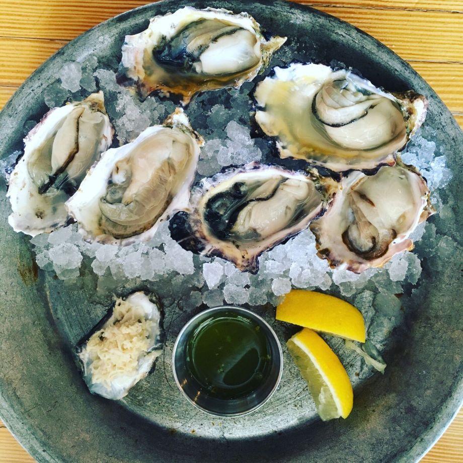 quadra-island-oysters-moderndaynomads-com